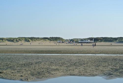 strand Oosterduin